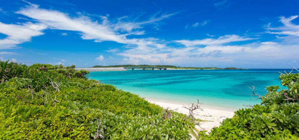 結婚35周年!珊瑚(さんご)婚式のプレゼントは、きれいな海やクルージングの旅がおすすめ